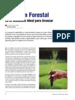 Forestal Inversion