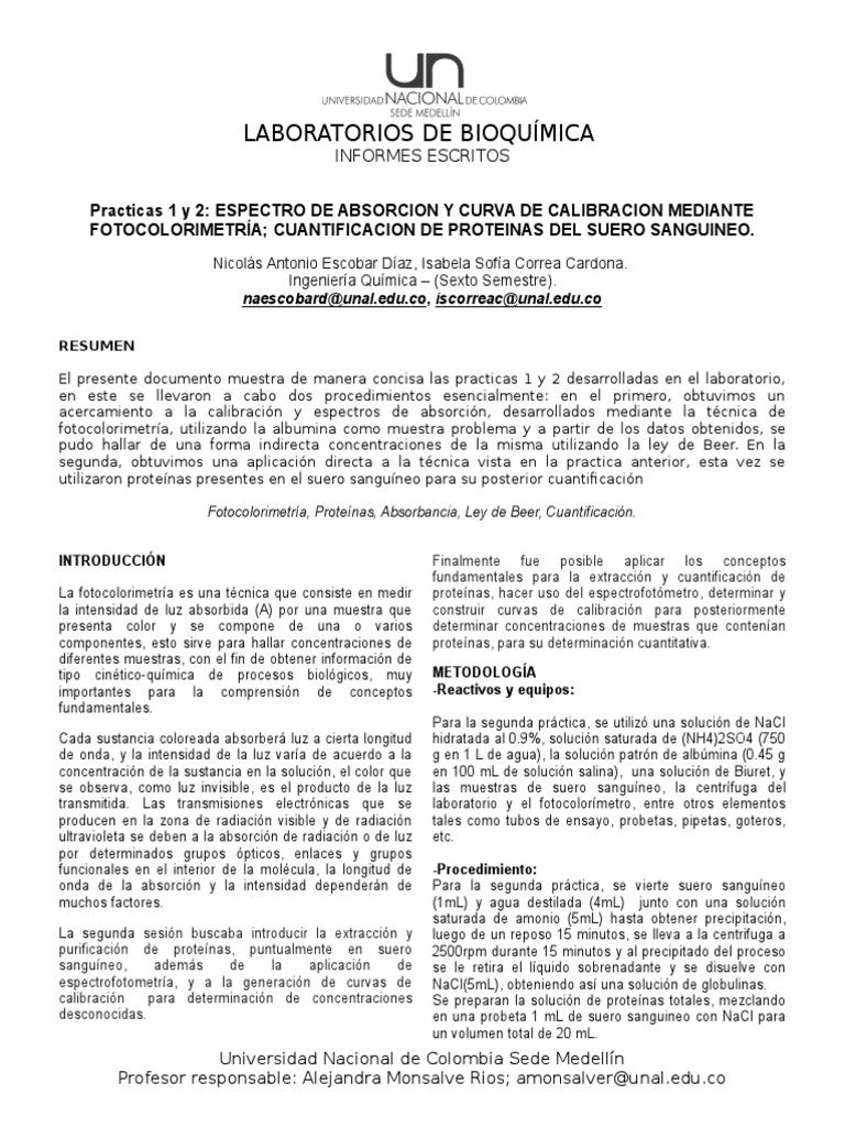 Plantilla Informes