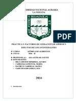 Informe 5. Revision de Literatura