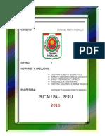 Caratula Portillo