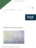 Gigantes no mercado de Tensoativos - Editora Stilo.pdf