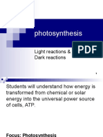 Lecture 23- Photosynthesis Dark Reactions