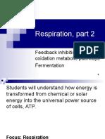 Lecture 25- Respiration Part 2
