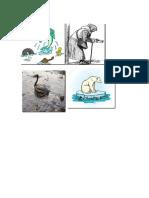 La Contaminación Provoca La Muerte de Muchos Animales