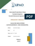 Informe Irrigaciones Cultivo Del Esparrago Fundoupao