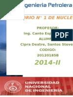 LABORATORIO-1-DE-NUCLEOS-CIPRA.docx