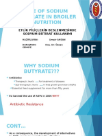 Sodium Butyrate in Animal Nutrition