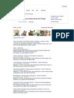 Kitten Google Suche