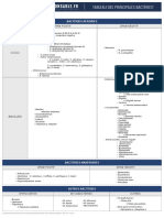 Tableau Des Principales Bacteries PDF