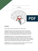 The_Brain