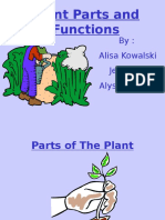 2014plant Parts & Functions