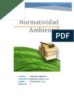 NORMATIVIDAD AMBIENAL