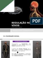 Bio U4 Regulação Seres Vivos