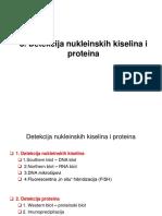 Detekcija Nukleinskih Kiselina i Proteina