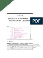 TEMA 1- Matrices y Sistemas de Ecuaciones Lineales