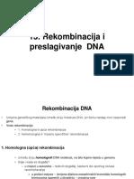 Rekombinacija, Preslagivanje DNA