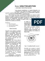 LP 5 Biologie Animala