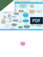 Mapa conceptual-teoria de la decision estadistica