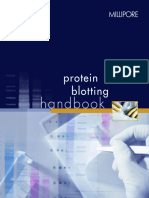 Protein Blotting Book MILLIPORE