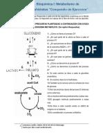 Metabolismo de Carbohiratos