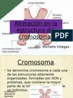 Alteracion Estructura cromosomica