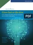 Software_Growth_Final.pdf