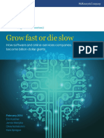 Software_Growth_Final.pdf
