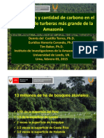 2. Distribucion y Cantidad de Carbono en Turberas Amazonia IIAP DdelCastillo