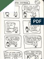 Igualdad gato-humana