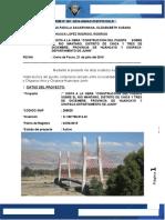 Informe-Visita Puente Comuneros