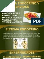Expo Sistema Endocrino y Nervioso