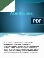 Acetilcolina.pptx