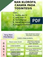 Peranan Klorofil Dan Cahaya Pada Fotosintesis Kel 3