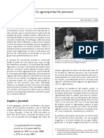Jóvenes en la agroexportación peruana