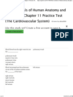 Anatomy and Physiology Chapter 11 Practice Test