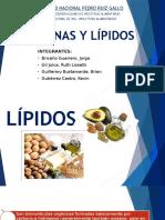 Proteínas y Lípidos