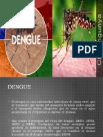 Dengue y Chik