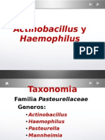 Clase Nº 14 ACTINO-HAEMOPHILUS 2010 OLGA