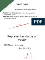 1_MagVectoriales