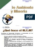 Medio Ambiente y Mineria