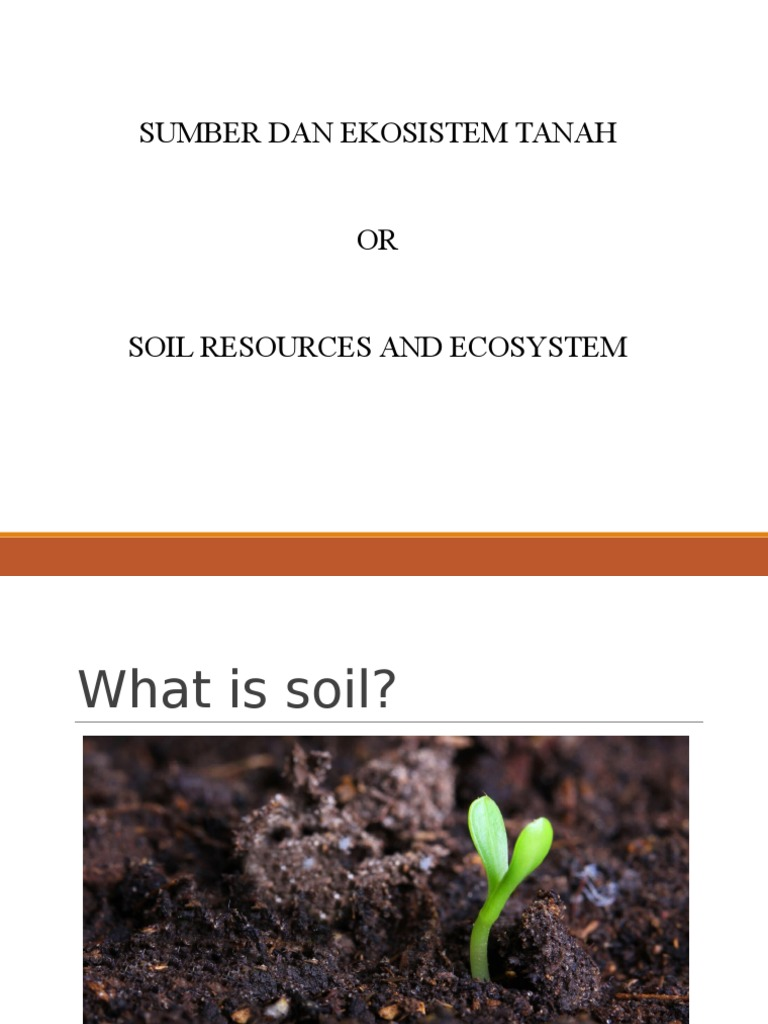 Chapter 1 a new2 1 student 1 soil plants for Soil uses and its importance