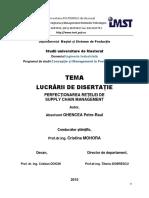 Ghencea Petre Raul - Disertatie