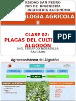 Clase 02 Plagas de Algodon