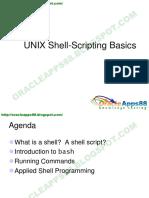 UNIX Shell-Scripting Basics (1).pdf