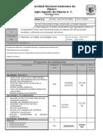 243035835 Formato Plan y Programa de Eval Info Segundo Periodo 2016 Docx
