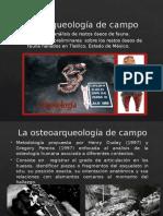 Osteoarqueología de campo.pptx