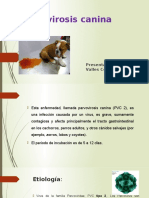 Parvovirosis canina DEISY V.C..pptx