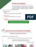 Generalidades de Proyectos de Inversión