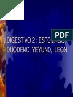 Clase 17 Digestivo 2 2004