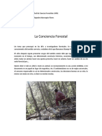 Proyecto Escolar Forestal